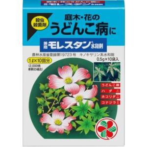 うどんこ病 兼商モレスタン水和剤 0.5g×10包 住友化学園芸|greentime