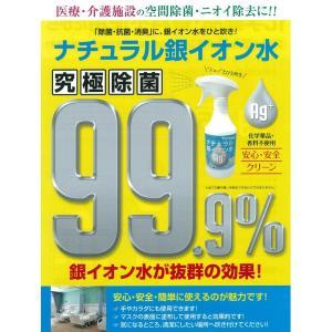 クーポンで表示価格より更にお得!ナチュラル銀イオン水 500ml|greenwindstore