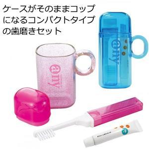 【日用雑貨・日本製グッズ】日本製 歯磨きセット エニイ・セット 1-05019(iw0a001)|griptone