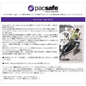 PacSafe パックセーフ85 12970004(#1305)(ei0a027)|griptone|05