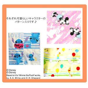 [送料299円〜]「tc4」日本製 Disney ディズニー スライダー式衣服圧縮袋(2枚入り) Cheerfulシリーズ 504500 2点迄メール便OK(ko1a176) griptone 02