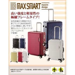 MAXSMART(マックススマート)50cm MS-205-21 TSAロック搭載 8輪(4輪ダブルキャスター)スーツケース フレーム 機内持ち込み(aj0a095)[C]|griptone|02