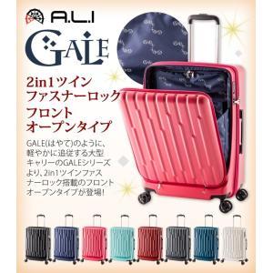 GALE(ゲイル)64cm GALE-F24 2in1ファスナーロック搭載 8輪(4輪ダブルキャスター)スーツケース ジッパー(aj0a099)[C]|griptone|02