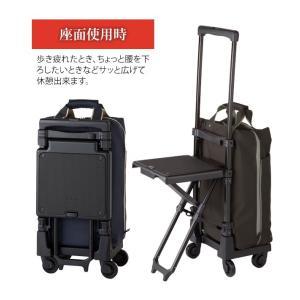 SWANY(スワニー)ウォーキングバッグ プレーネ 43cm Mサイズ D-163 4輪キャリーバッグ 座面付 (su1a019)[C]|griptone|04