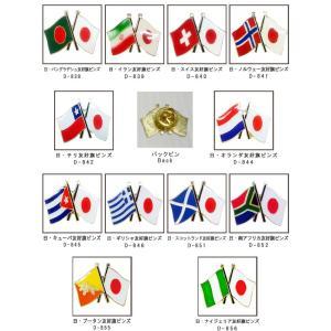 「tc」日本と各国の友好旗ピンズ D-838〜842・D-844〜846・D-851〜852 40点までメール便OK(da1a040)|griptone|02