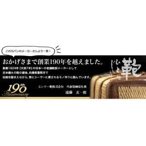 Spasso step(スパッソ ステップ)2 リュックキャリー46cm 1-030 南京錠付属 2輪キャリーバッグ 機内持ち込み(en0a028)[C]|griptone|13