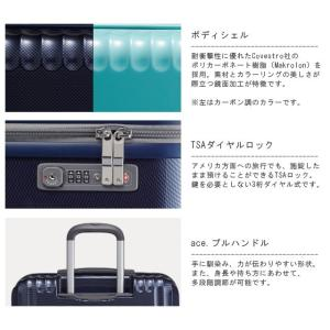 ace.(エース) Palisades-Z(パリセイド-ゼット) 55cm 598525(05583) TSAダイヤルロック搭載 4輪スーツケース ジッパー(je2a154)[C] griptone 03