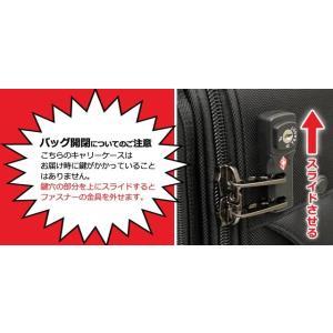 BERMAS FG(バーマス ファンクションギア)プラス 57cm 60424(60124) TSAロック搭載 2輪キャリーバッグ(ki2a006)[C] griptone 07