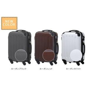 在庫限り!スーツケース アウトレット 激安 超軽量 MOA(モア) 鏡面ボディ TSAロック ジッパーキャリー 46cm TSA-D6260-SS 機内持ち込み(mo0a025)[C] griptone 04