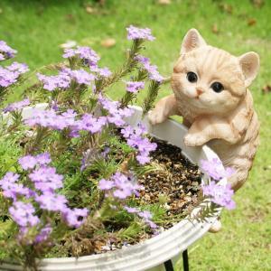 ガーデンオーナメント 茶トラ猫(プランターひっかけ) 置物 かわいい grooveplan