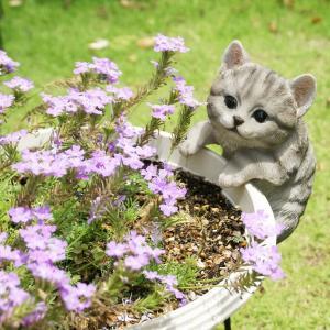 ガーデンオーナメント しまグレー猫(プランターひっかけ) 置物 かわいい grooveplan