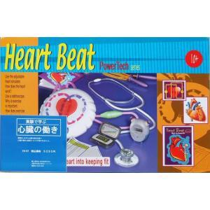 理科実験キット ツリーオブナレッジ社 調べよう心臓の働き 小学校高学年/中学生 自由研究|grooveplan