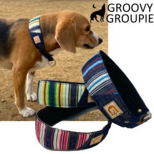 ハーフチョーク【小型犬用】ミニピン・イタグレにぴったり! マルチストライプ&デニム|groovygroupie