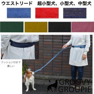 ウエストベルトリード ランニングリード  小型犬・中型犬用リードセット 【ポスト投函選択で送料無料】|groovygroupie