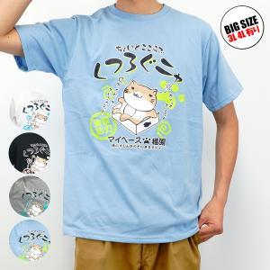 ねこぶちさん「くつろぐニャ」クルーネック 半袖Tシャツ マイペース編 COOL&DRY|groovystores