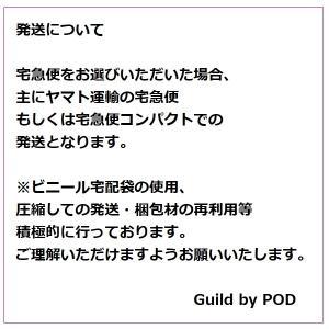 Tシャツヤーン CANDY 100g|guild-yarn|15