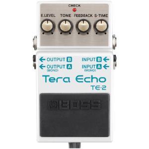 BOSS TE-2 Tera Echo 《エフェクター》|guitarplanet