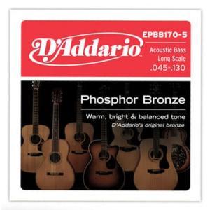 D'Addario 45-130 EPBB170-5 Phosphor Bronze Acoustic Bass 5弦アコースティックベース用|guitarplanet