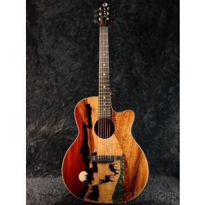 Luna Guitars Vista Deer Tropical Wood A/E  《アコギ》 guitarplanet