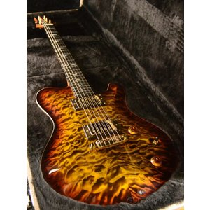 Nik Huber Dolphin II -Tigereye Burst-【2019年モデル】《エレキギター》|guitarplanet