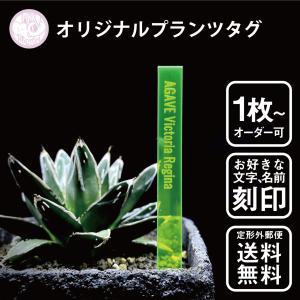 オリジナル蛍光プランツタグ 植物ネームプレート 園芸ラベル ガーデニングラベル 植物タグ 蛍光の画像