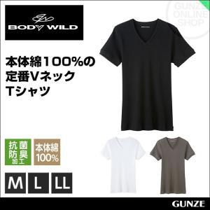BODY WILD VネックTシャツ5枚セット グンゼ リブ編み BWJ415JP5 gunze-it