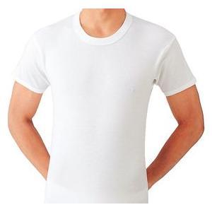 グンゼ 半袖丸首シャツ2枚セット やわらか肌着 綿100% DV6014B|gunze-it