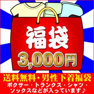 メンズインナー 3,000福袋(L) BVD グンゼ BOD...