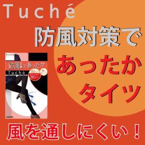 110デニール M〜Lサイズ L〜LLサイズ GUNZE(グンゼ)/Tuche(トゥシェ)/無地タイツ(婦人)/THW13H|gunze