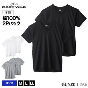 GUNZE(グンゼ)/BODY WILD(ボディワイルド)/VネックTシャツ2枚組セット(V首)(紳士)/BW50152|gunze