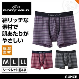 ボクサーパンツ メンズ GUNZE(グンゼ)/BODY WILD(ボディワイルド)/ボクサーブリーフ(前開き)(紳士)/年間ボクサー/BWE194G gunze