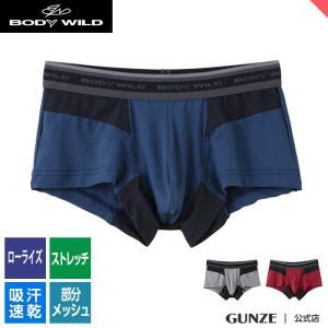 セール 特価 GUNZE(グンゼ)/BODY WILD(ボディワイルド)/ローライズブリーフ(前とじ)(メンズ)紳士/BWP924J/M〜L|gunze