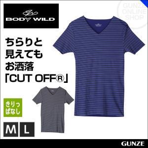 セール 特価 BODYWILD ボディワイルド vネックtシャツ キリッパ GUNZE BODY WILD グンゼ 肌着 メンズ (V首)(紳士)/年間シャツ/BWY222|gunze