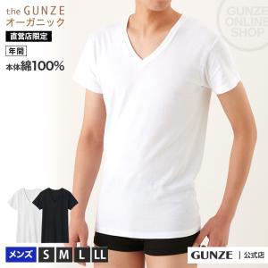 GUNZE(グンゼ)/the GUNZE(ザグンゼ)/【ORGANIC】VネックTシャツ(メンズ)/CK9515/S〜LL|gunze