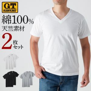 GT ホーキンス G.T.HAWKINS GUNZE(グンゼ)/VネックTシャツ(2枚組)|gunze