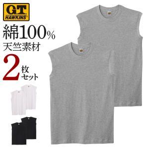 GT ホーキンス Tシャツ GUNZE(グンゼ)/HAWKINS(ホーキンス) サーフシャツ 2枚セット 31HK10182|gunze