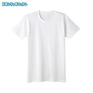 130サイズGUNZE(グンゼ)/KG(ケージー)/半袖丸首(男の子)/SC6550〜SC6580|gunze