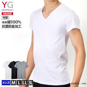綿100% グンゼ YG Vネック 半袖 Tシャツ メンズ インナー GUNZE 男性下着/VネックTシャツ(紳士)/年間シャツ/YV0015N|gunze