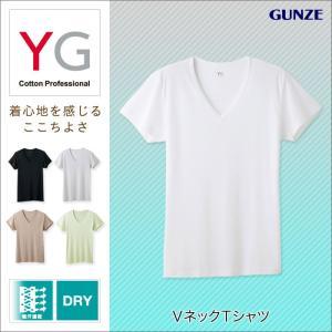 グンゼ 男性下着 YG DRY&DEO Vネック Tシャツ半袖 GUNZE (V首)(紳士)/YV0115|gunze