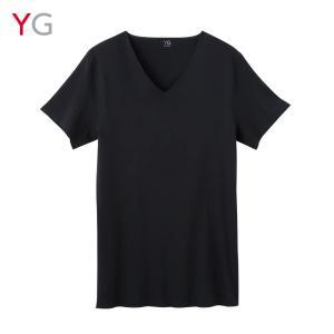 GUNZE(グンゼ)/YG/VネックTシャツ(V首)(紳士)/YV1315|gunze