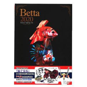 【書籍】ファンタジーワールド 豪華ベタ写真集「Betta 2020」 熱帯魚 (観賞本)【ネコポス不可】