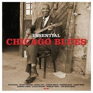 輸入盤 VARIOUS / ESSENTIAL CHICAGO BLUES [LP] guruguru