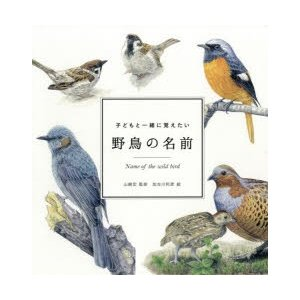 子どもと一緒に覚えたい野鳥の名前