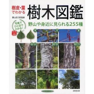 樹皮・葉でわかる樹木図鑑 野山や身近に見られる255種