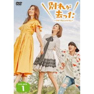 別れが去った〜マイ・プレシャス・ワン〜 DVD-BOX1 [DVD]|guruguru