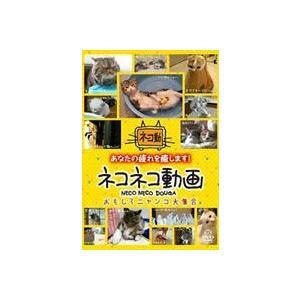 ネコネコ動画〜おもしろニャンコ大集合〜 [DVD]