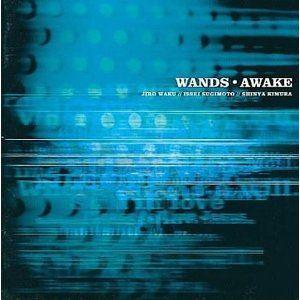 WANDS / AWAKE [CD]