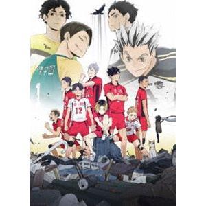 OVA『ハイキュー!! 陸 VS 空』 [DVD]