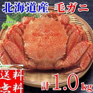 毛ガニ 1kg 北海道産 ギフト 浜茹で ボイル 冷凍 超特大 カニ味噌 3特 4特 良品 選別 厳選 毛蟹 お取り寄せ
