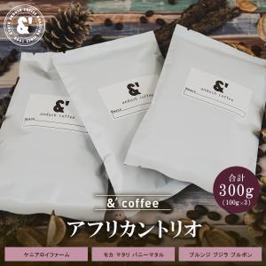 NEW コーヒー豆 送料無料 珈琲豆 アンダッシュ アフリカン トリオ 3種で300g コーヒー 豆 アフリカ産 焙煎後すぐ発送|gurumekan